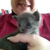 Kamoi im Alter von 3 Wochen.